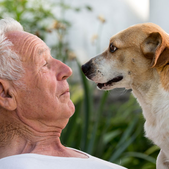 Elderly Man with Dog